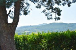 2017-06-14-Greece-Delphi-enroute3